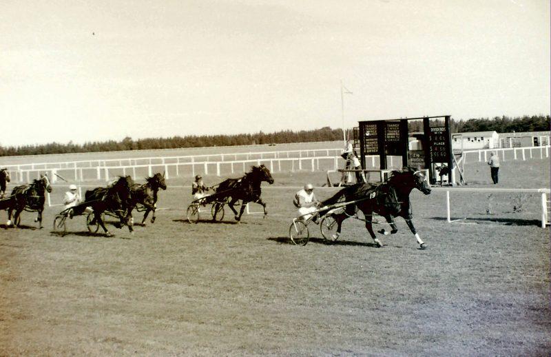 Banks Peninsula Trotting Club meeting 1967