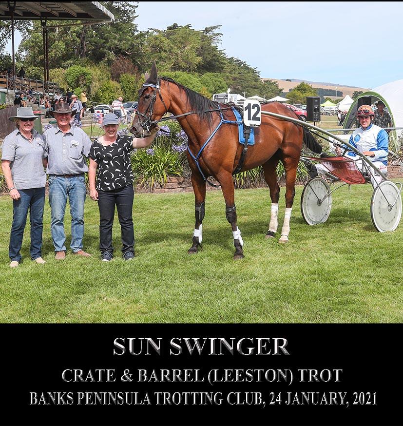 Sun Swinger